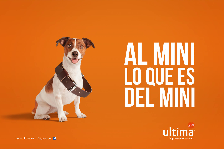 Affinity_Ultima_Mini